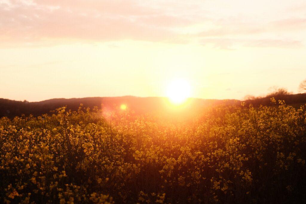Landschaft mit Sonnenuntergang